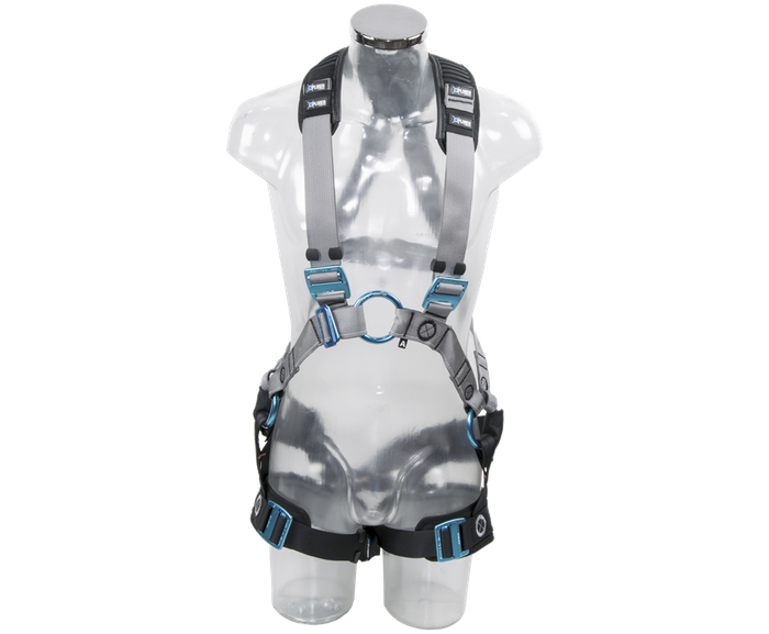2 point harness-M