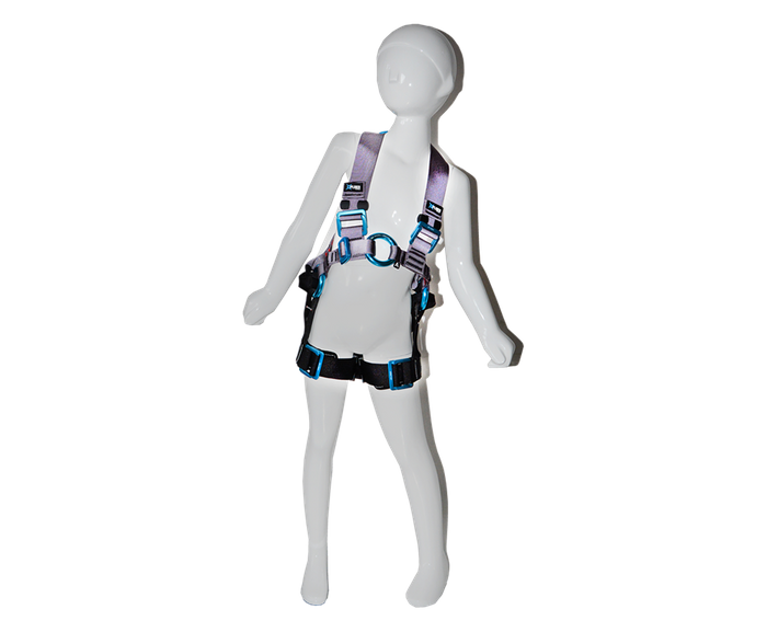 2 point harness - Junior-S