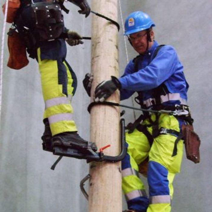Power Industry Treepole