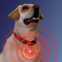 SpotLit™ Collar Light - Red
