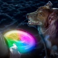 Flashflight® Dog Discuit™ LED Flying Disc - Disc-O
