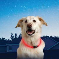 NiteHowl™ LED Safety Necklace - Red